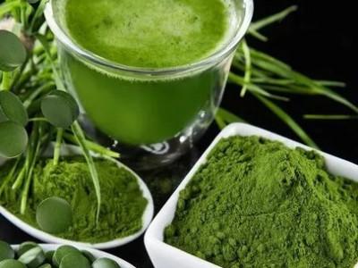 Вся правда о спирулине: описание водорослей, состав, полезные свойства, правила использования
