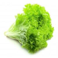 Салат листовой 1 шт