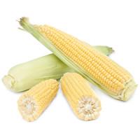Кукуруза Краснодар